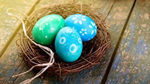 Hintergrundbilder Ostern Feiertage Bretter Ei Nest Drei 3