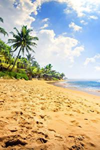 Bilder Tropen Küste Himmel Meer Palmengewächse Sand Wolke Strand Natur