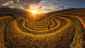Hintergrundbilder Sonnenaufgänge und Sonnenuntergänge Acker Vietnam Sonne