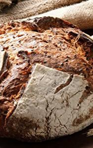 Hintergrundbilder Brot Großansicht Weizen Ähre Getreide