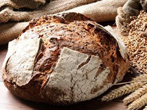 Hintergrundbilder Brot Großansicht Weizen Ähre Getreide Lebensmittel