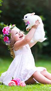 Hintergrundbilder Kaninchen Kleine Mädchen Lächeln Sitzend Glücklich Kinder