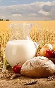Bilder Weizen Milch Brot Acker Kanne
