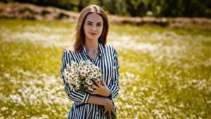 Bilder Kamillen Blumensträuße Braune Haare Kleid Hand Alexey Gilev