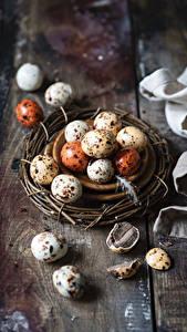 Bilder Ostern Ei Nest Lebensmittel