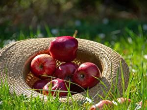 Hintergrundbilder Äpfel Gras Der Hut Rot Lebensmittel