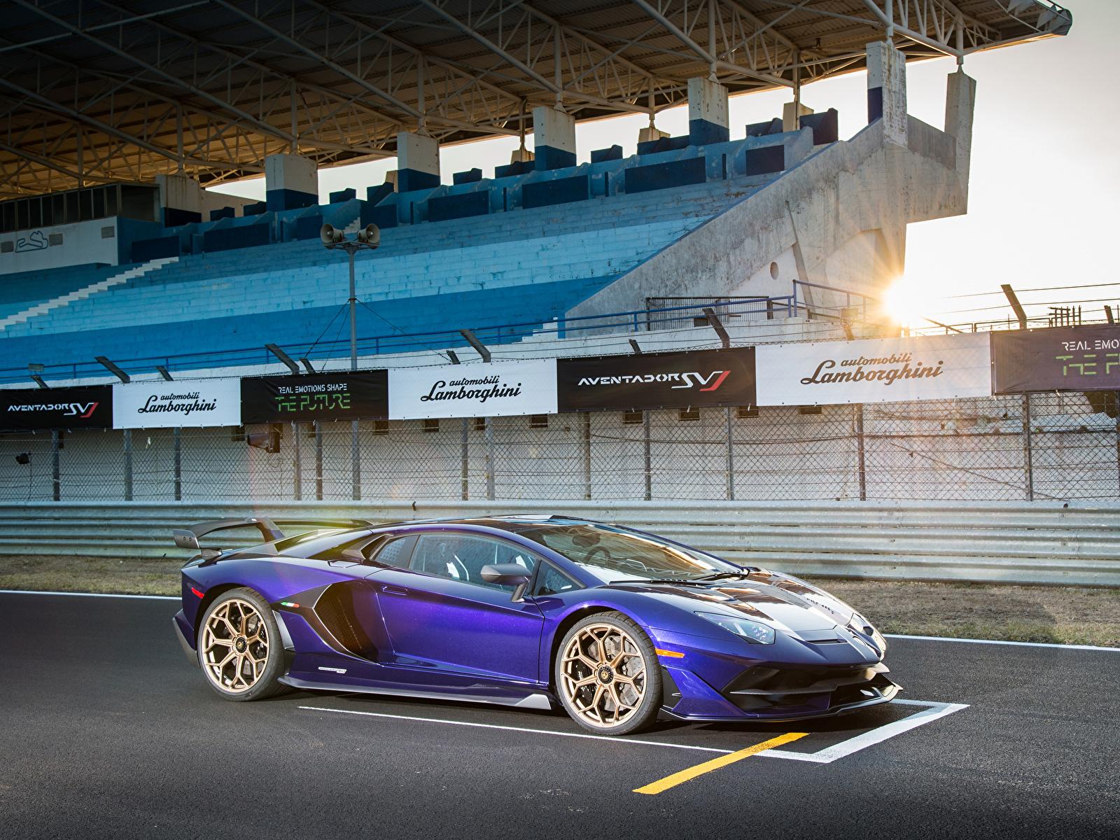 Hintergrundbilder Lamborghini 2019 Aventador SVJ Violett Autos 1600x1200