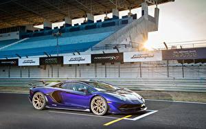 Bilder Lamborghini Violett 2019 Aventador SVJ