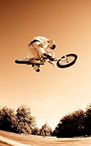 Bilder Mann Fahrräder Sprung sportliches