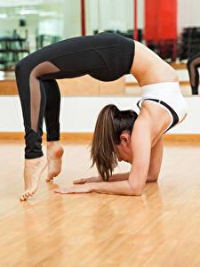 Fotos Gymnastik Braune Haare Trainieren Bein Mädchens Sport