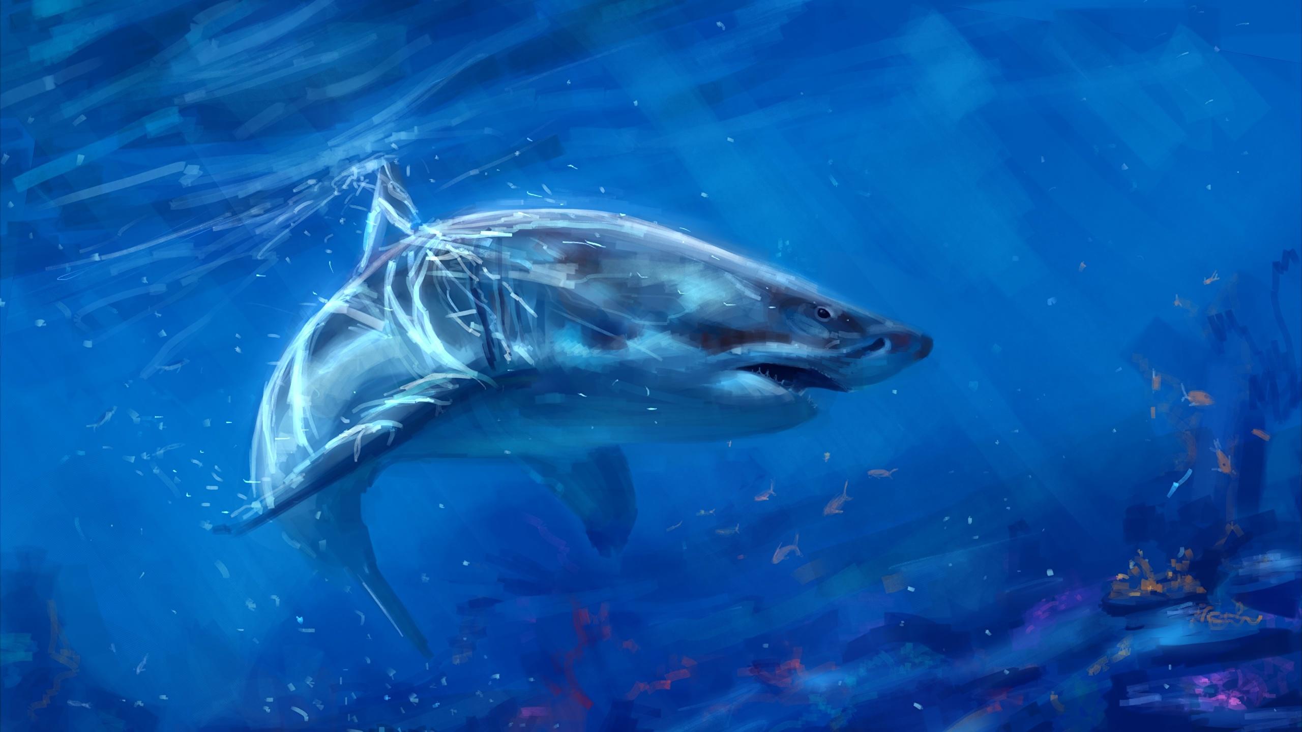 壁紙 2560x1440 アンダーウォーターワールド 描かれた壁紙 サメ