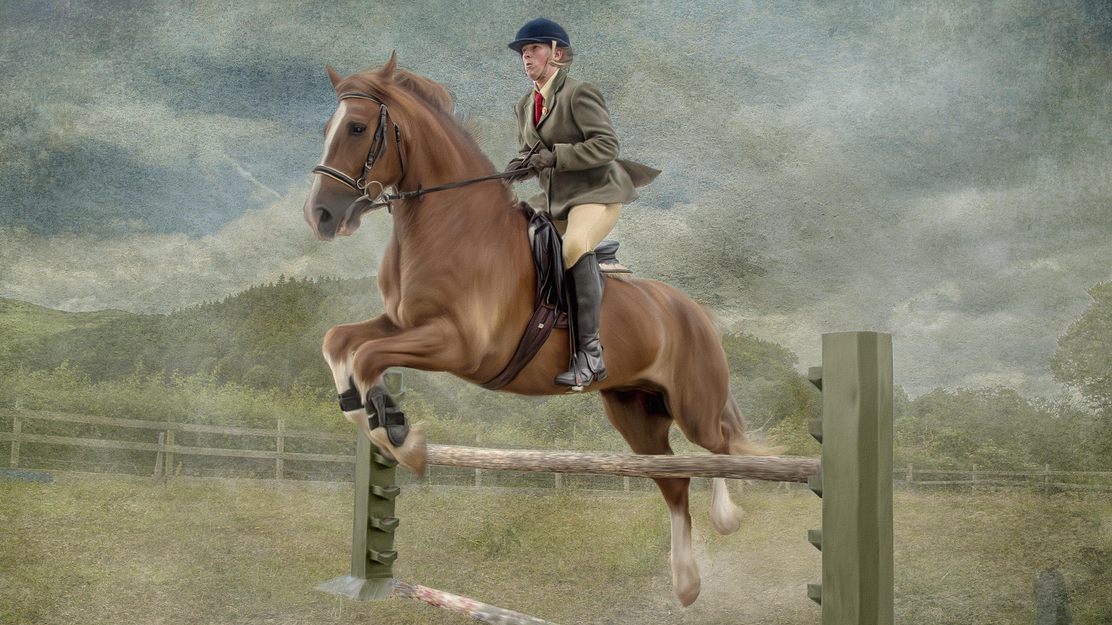 Desktop Wallpapers horse Man athletic Equestrian sport 3840x2160