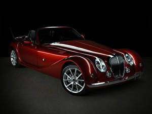 Fotos Mitsuoka Bordeauxrot Metallisch Roadster 2015-17
