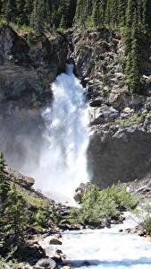 Fotos Kanada Flusse Wasserfall Stein Wald Felsen River Kicking Horse, British Columbia, Yoho National Park Natur