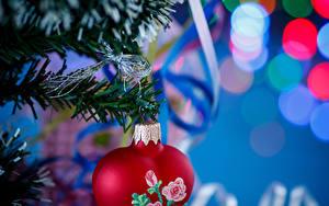 Hintergrundbilder Neujahr Ast Band Herz