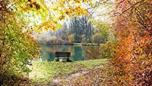 Hintergrundbilder Teich Herbst Bank (Möbel) Ast Blatt Weg