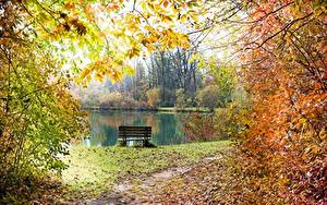 Hintergrundbilder Teich Herbst Bank (Möbel) Ast Blatt Weg Natur