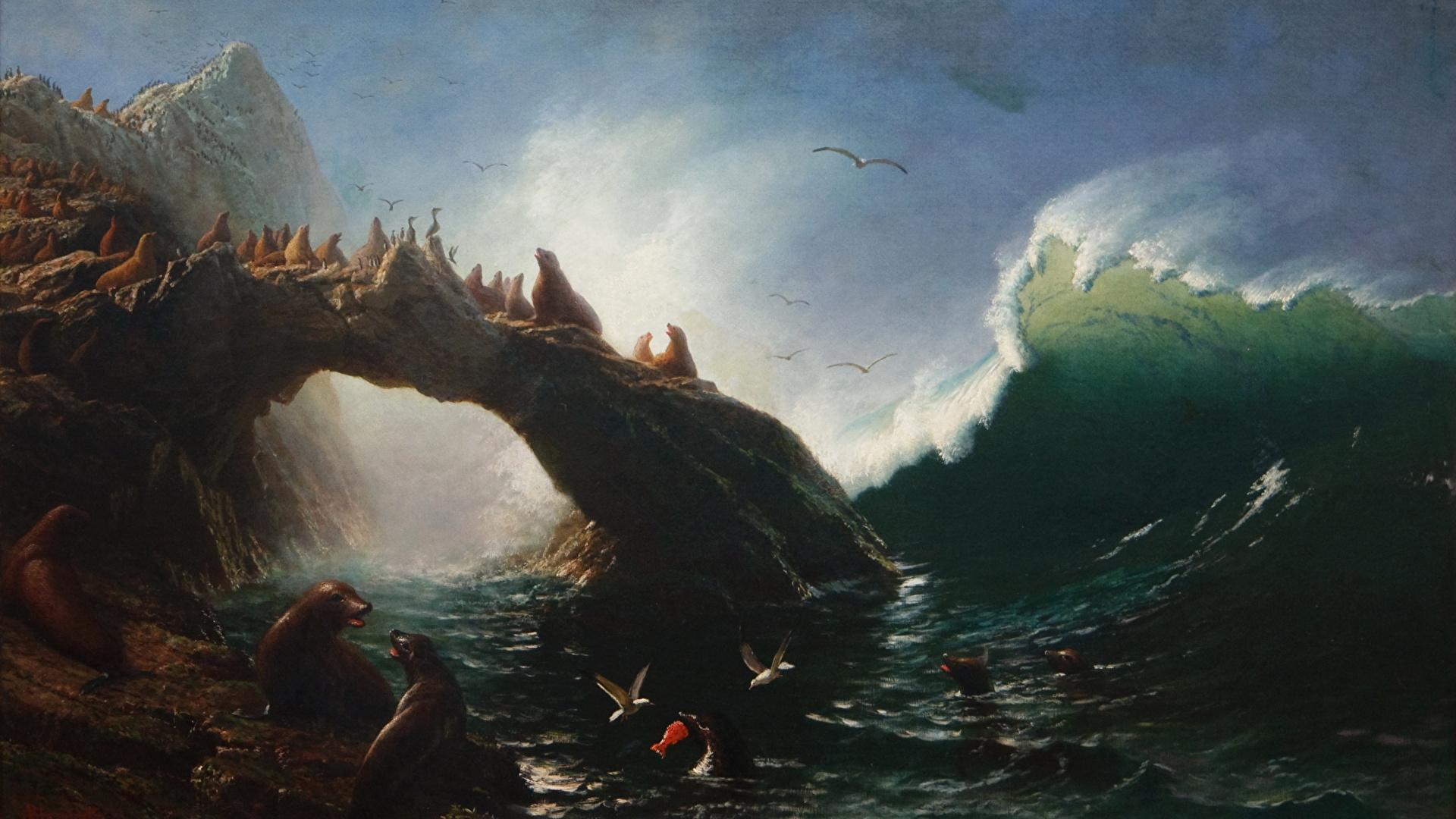 Wallpaper Seals Albert Bierstadt Farallon Island Waves