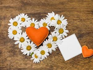 Papéis de parede Matricaria Dia dos Namorados Coração Cartão do molde Flores