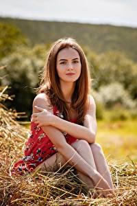 Hintergrundbilder Braune Haare Sitzt Heu Hand Alexey Gilev junge frau