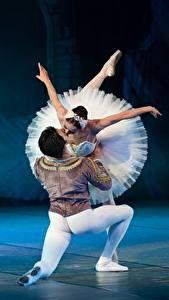 Wallpaper Men Ballet Dance Swan Lake Kiss Two Girls