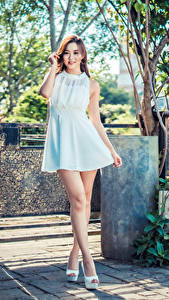 Fotos Asiatische Braune Haare Kleid Bein Blick Mädchens