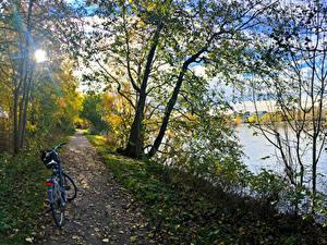 Fotos Norwegen Fluss Küste Weg Fahrräder Bäume Blatt Fredrikstad Kommune Ostfold Natur