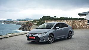 Fotos Toyota Hybrid Autos Grau 2019 Corolla Hybrid Sedan Worldwide