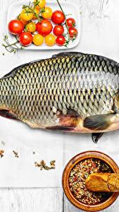 Bilder Meeresfrüchte Fische - Lebensmittel Gewürze Tomate Bretter Lebensmittel