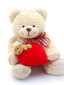Hintergrundbilder Valentinstag Teddy Weißer hintergrund Herz