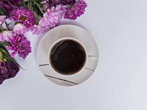 Bilder Kaffee Chrysanthemen Grauer Hintergrund Tasse Lebensmittel Blumen