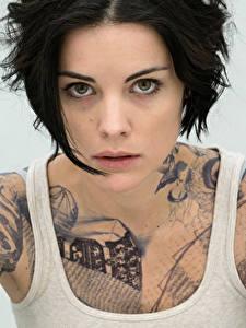 Hintergrundbilder Jaimie Alexander Unterhemd Brünette Tätowierung Starren Blindspot junge frau Prominente