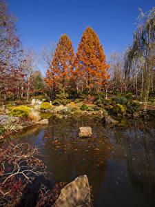 Image USA Parks Autumn Pond Stones Trees Gibbs Gardens