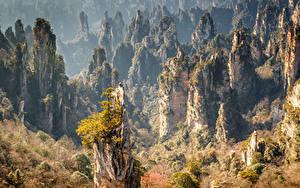 Sfondi desktop Cina Parchi Foreste Autunno Falesia Zhangjiajie National Forest Park Natura