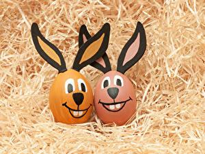 Fotos Ostern Kreativ Kaninchen Ei Stroh 2