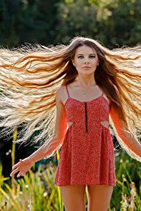 Fonds d'écran Cheveux Les robes Aux cheveux bruns Guenter Stoehr