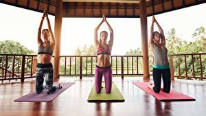 Bilder Fitness Drei 3 Trainieren Hand Mädchens Sport