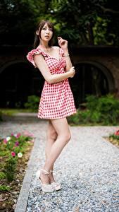 Fotos Asiaten Posiert Bein Kleid Braune Haare Hand