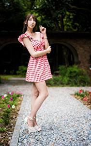 Fotos Asiaten Posiert Bein Kleid Braune Haare Hand junge frau
