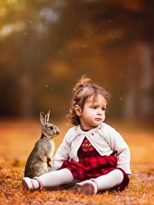 Bilder Kaninchen Kleine Mädchen Sitzend Kinder