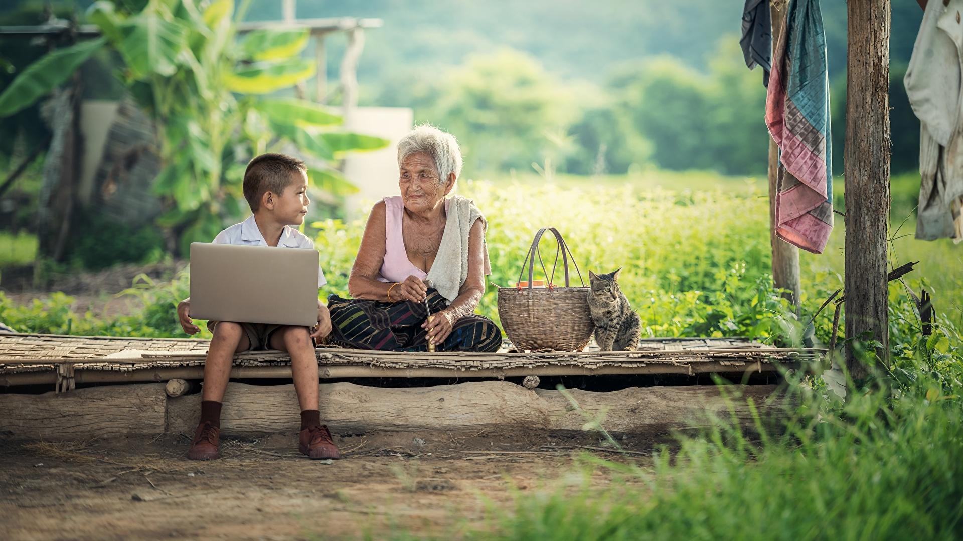 Fotos von Notebook Junge Katze Alte Frau Kinder Weidenkorb Asiatische Gras Sitzend 1920x1080