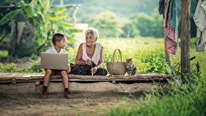 Picture Asian Cats Boys Old woman Wicker basket Sitting Grass Laptops Children