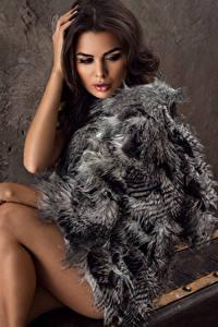 Fotos Braune Haare Pelzmantel Sitzt Mädchens