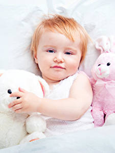 Hintergrundbilder Spielzeuge Teddy Kleine Mädchen Blick kind