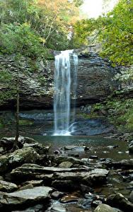 Bilder Vereinigte Staaten Park Wasserfall Steine Felsen Cloudland Canyon State Park Natur