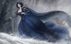 Bilder Winter Kleid Fantasy Mädchens