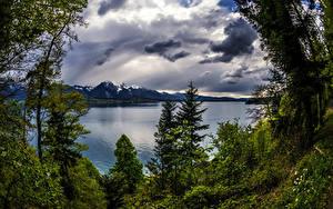 Fotos Schweiz Landschaftsfotografie See Himmel Bäume Wolke Thun Canton
