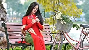 Hintergrundbilder Asiatische Bank (Möbel) Sitzen Fahrräder Brünette Mädchens