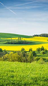 Fotos Landschaftsfotografie Acker Grünland Gras Natur