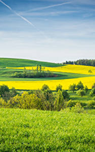 Fotos Landschaftsfotografie Felder Grünland Gras Natur